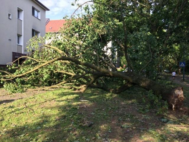 201-06-10 Ueberoertliche_Hilfe_Essen (4)